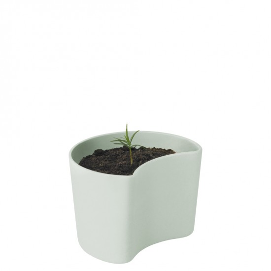 YOUR TREE planting pot with seeds - green
