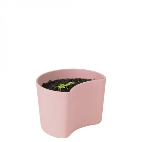 YOUR TREE planting pot with seeds - pink