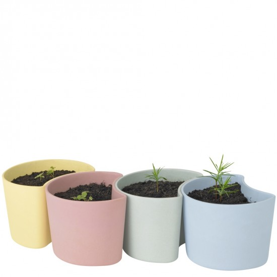 YOUR TREE planting pot with seeds - yellow